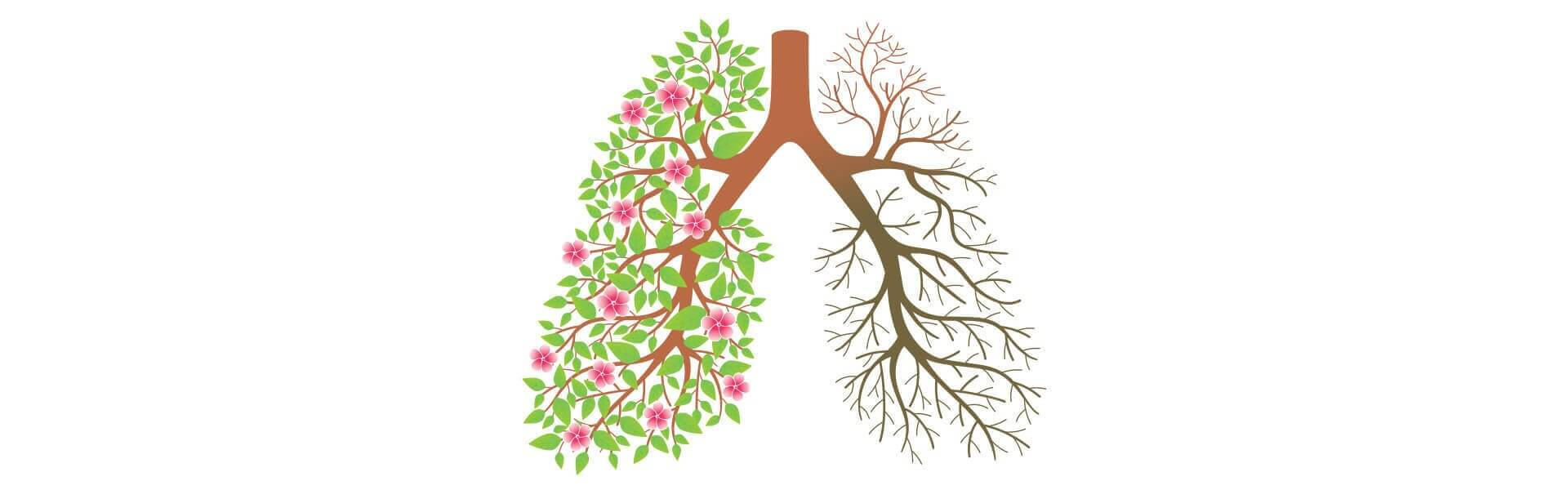 natural lung and respiratory treatment